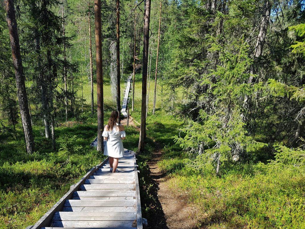 Wandelen in Finland nationaal park Hossa