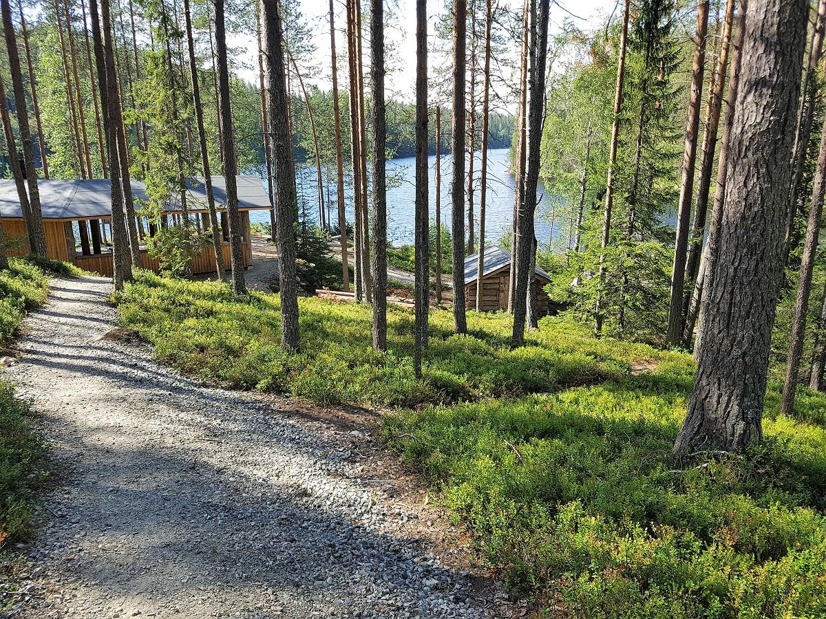 Wandelen naar rotstekeningen in Finland